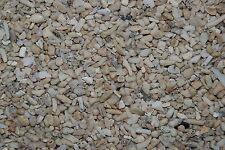 Aquarium Cichlid Coral Sand  25 Kilo Bag Sand Size Approx 3 mm for Aquariums