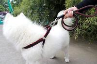 Pet Dog Nylon Rope Training Leash Slip Lead Strap Adjustable Traction Collar