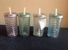 SET OF 4 NEW Down Home Country Jar Drinkware Jars Glasses with Lids & Straws
