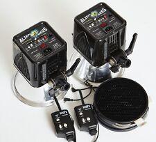 2 AlienBees B800, 2 Pocket Wizard+ II, 4 Grids, Studio Strobe Flash, Paul C Buff