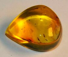 13.5gr RUSSIAN 100% BALTIC NATURAL AMBER BEADS GEMSTONES ROCK POLISHED STONE 老琥珀