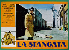 T49 FOTOBUSTA LA STANGATA PAUL NEWMAN ROBERT REDFORD SHAW GEORGE ROY HILL 2