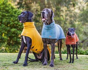 Designer dog Sweater For Greyhound