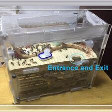 3d ANT Farm Educational Earth Nest Formicarium Housing House Colony Living Feed