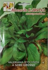 Per il giardino la splendida vera Valeriana-perfezionandolo e resistente!