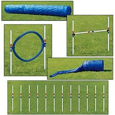 Dog Agility 5 Piece Set   Training and Obedience