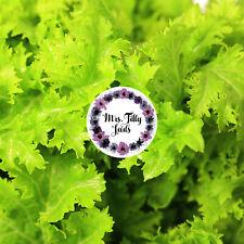 100 graines sibérie sauvage-Kohl peaufiner winterkohl Brassica napus