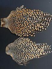 Beautiful Jungle cock Capes . High grade