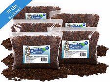 New listing 10lb Chubby Dried Silkworm Pupae for Koi, Fish, Reptiles, Terrapin 10lbs