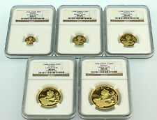 1998 China Large Date Gold Panda 5 Coins Set NGC
