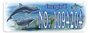 Dolphins Clam Welcome Wall Sign Customize Gifts Outdoor Indoor Plaque