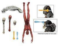 Predator Deluxe Accessory Pack