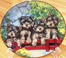 Danbury Mint Yorkshire Terrier On the Go Yorkie Yorky Puppy Dog Plate