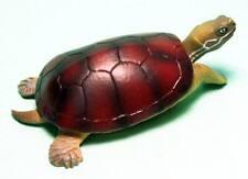 Takara Tomy 3D Capsule Encyclopedia Yellow pond turtle figure Us seller new