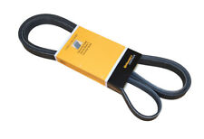 Serpentine Belt CRP PK060933