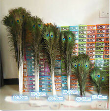 Wholesale 10-200pcs beautiful peacock feathers eyes 10-40 inches/25-100 cm