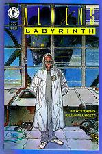 ALIENS: LABYRINTH # 1 (of 4) 1993  (fn-vf)