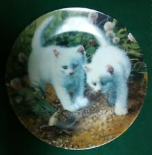 A Chance Meeting: White American Shorthairs-Edwin M Knowles China Company