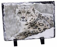 Snow Fall Leopard Photo Slate Christmas Gift Ornament, AT-56SL