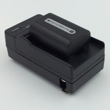 Battery + Charger for SONY Handycam HDR-CX110 CX150 HDR-CX550V CX560V Camcorder