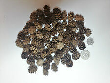 100+ Mini Sm. REAL Hemlock Pine Cones Crafts Organic Potpourri, Cards, & More!