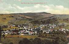 Livingstone Manor New York Birdseye View Of City Antique Postcard K64641