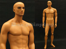 Tan skin young male mannequin Dress Form Display #Md-Ham25