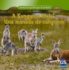 A Kangaroo Mob / Una manada de canguros (Animal Groups / Grupos De Animales)