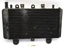 Triumph Tiger 955i 709 EN - Kühler Wasserkühler