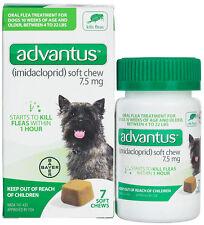 Advantus Soft Chew Oral Flea for Dogs (4 - 22 lbs, 7 ct) 7.5mg Imidacloprid