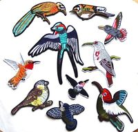 Exotic birds Patch Embroidered Iron Sew On Applique Badge BIRD PARROT