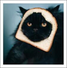For When I Get Peckish... Cattitude Greeting Card Blank Inside Any Occasion