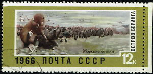 Russia Fauna Bering Island Northern Fur Seals Colony stamp 1966 A-11