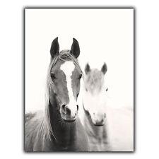 HORSES HORSE equestrian METAL WALL PLAQUE Sign art poster print wall home decor