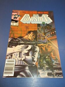 Punisher Limited Series #2 Newsstand Variant FVF Beauty Wow