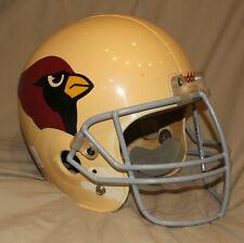 Arizona Cardinals Football Helmet!