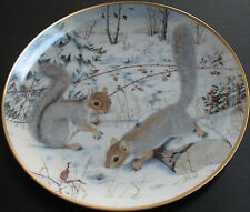 Squirreling For Nuts In January Decorative Plate Limited Edition Porcelain