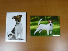 lot 2 Magnets / aimants 7,8 cm X 5,3 cm CHIENS : JACK RUSSEL 13/14