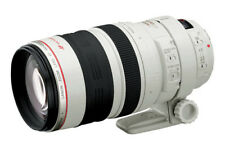 Canon EF 100-400mm f/4.5-5.6 IS L Telephoto Lens