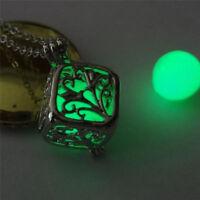 Magic Luminous Steampunk Fairy Heart Locket Glow In The Dark Pendant Necklace