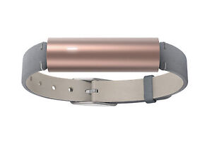 Misfit Ray Wearable Bluetooth Activity Tracker/Sleep Calorie Steps Gold/ Leather