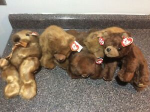 TY Classic Plush - BABY GINGER COCOA BABY PAWS FOREST (2) MWMT LOT OF 5