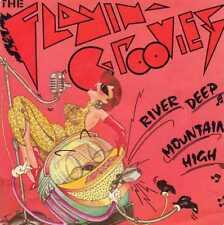 "FLAMIN' GROOVIES ""RIVER DEEP MOUNTAIN HIGH"" ORIG FR 1981"