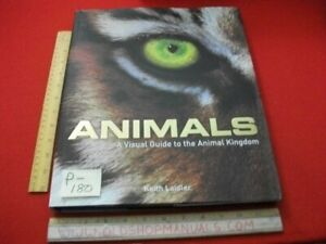 ANIMALS-A VISUAL GUIDE TO THE ANIMAL KINGDOM-GREAT INFO & PICTURES-GREAT 4 KIDS!