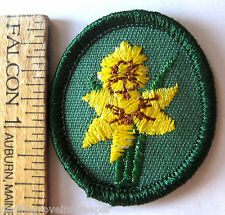 Retired Oval 1978-2011 Girl Scout DAFFODIL TROOP CREST Yellow Flower Patch Badge
