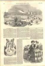 1852 New Railway Traffic Bridge Dresden Destructive Fire Harwell Patagonian Star