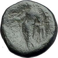 ANTIOCHOS III Megas 222BC RARE R1 Ancient Greek SELEUKID King Coin APOLLO i62197