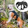 Harnais Anti Traction pour chien Réfléchissant Rembourré Gilet Réglable 3 Taille