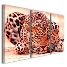 Stampe su tela canvas Leopard quadri moderni animali savana natura ® quality