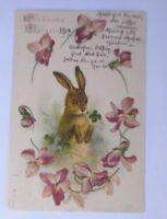 Ostern, Hase, Kleeblatt, Blumen,    1902  ♥ (62996)